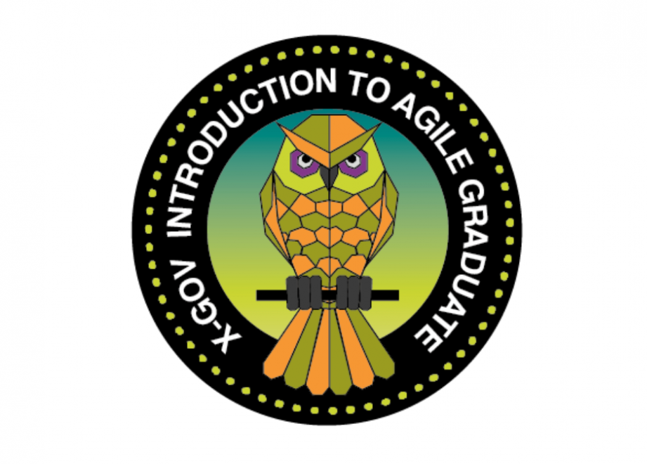 """Mission patch with an owl at the centre, and text around it reading """"X-Gov Introduction To Agile Graduate"""""""